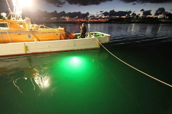 DC12-24V LED Pesce Light Led Led Led Illuminazione barca Leggero la barca da pesca subacquea Lampada a LED da esterno 30W 60W
