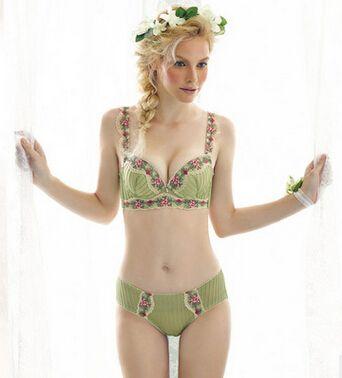2017 Intimates Set 2016 Women Sexy Plus Size Bra Sets Embroidered ...