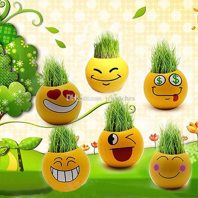 2017 Emoji Mini Plants Pots Qq Expression Magic Grass Planting Bonsai Green  Plants Potted Diy Gift Home Decoration From Jcwatches, $2.66   Dhgate.Com