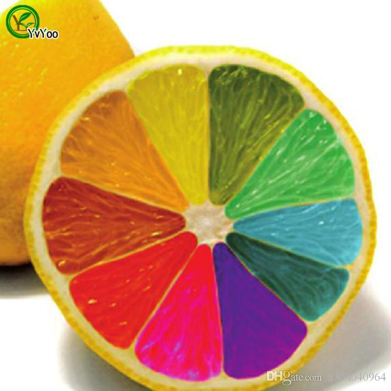 Graines de citron colorisées Plantes de jardin Bonsaï fruit bio et graines de légumes x007