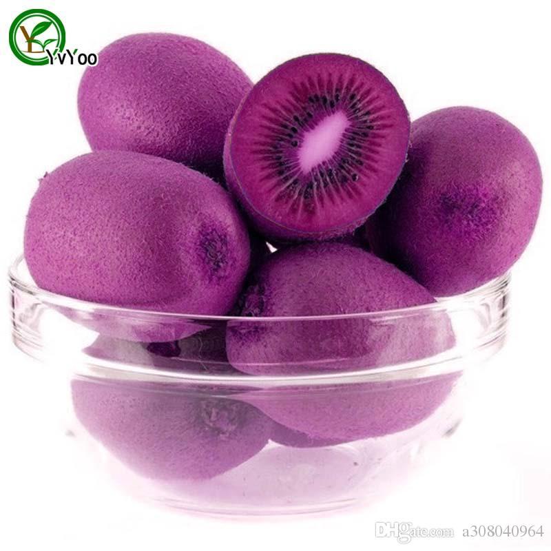 100 particules / sac Violet Kiwi Graines Nutritives et Délicieuses Graines De Fruits BRICOLAGE Maison Bonsaï Arbre 100 Particules / t003