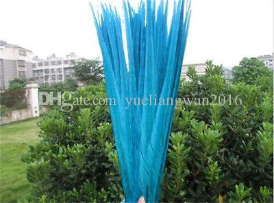 Custom colors pheasant tail feathers rooster feathers jewelry craft hat mask feather hair extention approx 20-22inch / 50-55cm