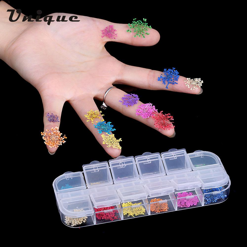 Wholesale Nail Art Decoration Real Nail Dried Flowers Diy Tips With