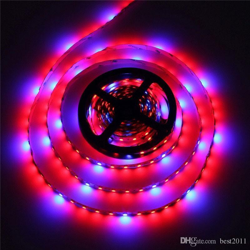 Vollspektrum SMD5050 LED wachsen Streifenlicht NICHT-wasserdichte LED wachsen Licht für die Hydroponik-Betriebs-wachsende Lampe wachsen Kasten rotes Blau 4: 1