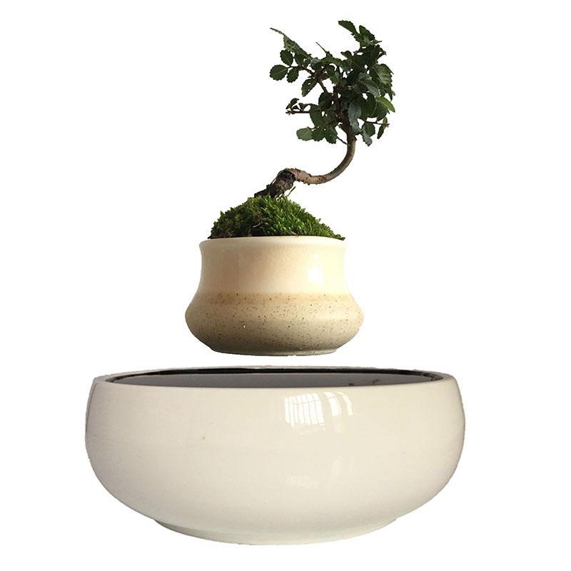 Garden Planters Flower Pots Planters 2018 Japan High Tech Magnetic  Levitation Floating Bonsai Tree Ceramic Garden XMAS Gifts For Men Free Ceramic  Garden ...