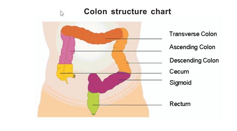 idroterapia del colon con perdita di peso