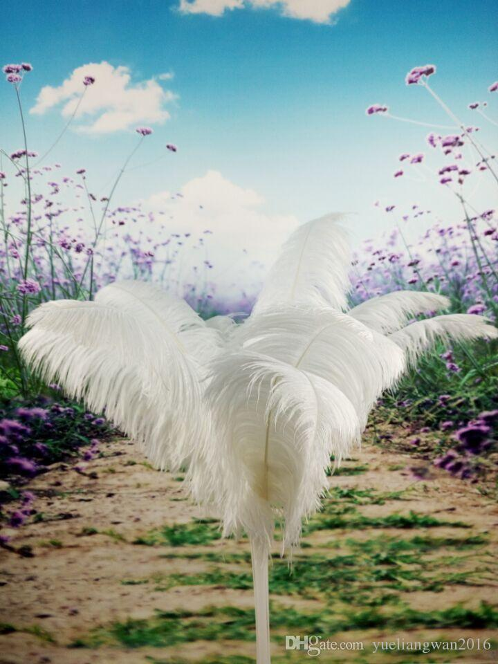 Wholesale 16-18inch White black red pink blue yellow green purple rose Ostrich Feather Plumes for Wedding centerpiece table centerpiece