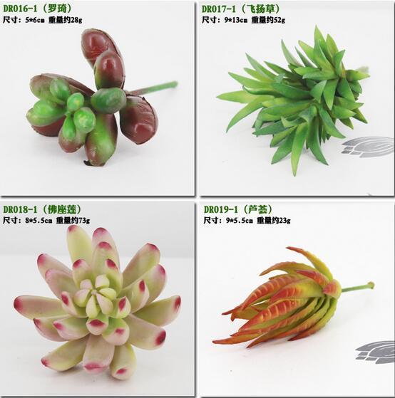 시뮬레이션 즙이 많은 인공 꽃 장식품 미니 녹색 인공 즙이 많은 식물 식물 정원 장식