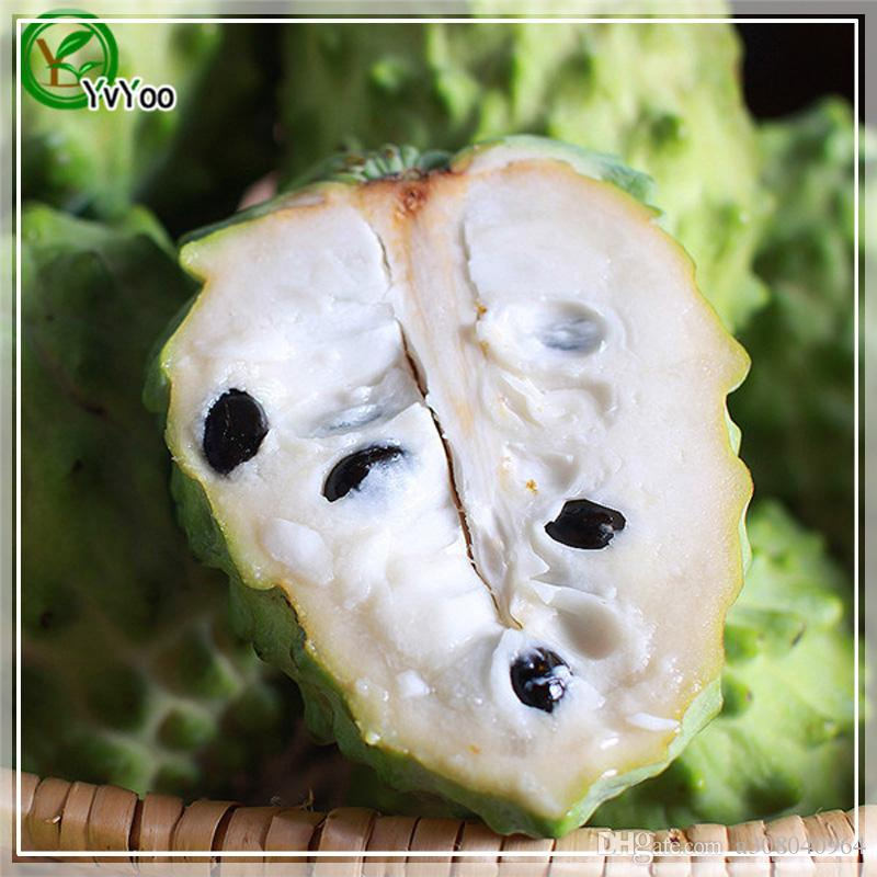 Sugar apple Seeds Organic Fruit Tree Seeds Home Garden Fruit Plant ,Can Be Eaten! G023