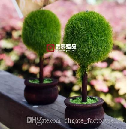Plastic Tree Photo Holder Place Card Holder Wedding Table Decoration Wedding Favors Gifts