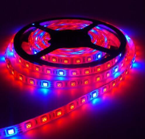 5m waterproof grow led strip light 12v red blue 81714151 5m waterproof grow led strip light 12v red blue 81714151 smd 5050 300 led growing hydroponic plant lamp growlight led strip lights price kitchen aloadofball Gallery