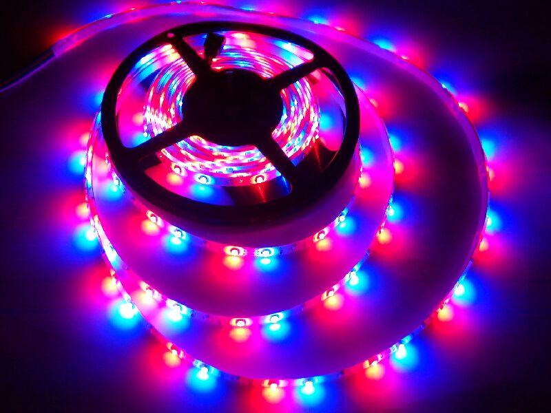 DC 12V 5M 2835 RGB LED مصباح قطاع الضوء ضوء حبل الشريط 60 المصابيح / م متعدد الألوان تغيير مع ir البعيد تحكم لوسيس دي نافيداد ce روش