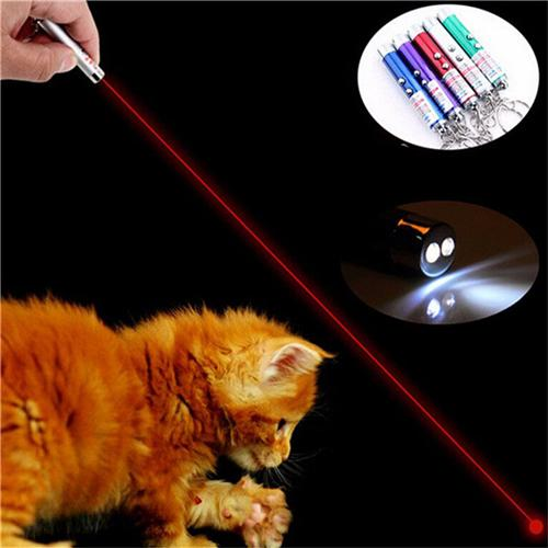 3 in 1 Mini Red Laser Pointer Pen LED Flashlight Show Funny Pet stick Childrens Cat Toy Money Detector Pen Torch With Keychain