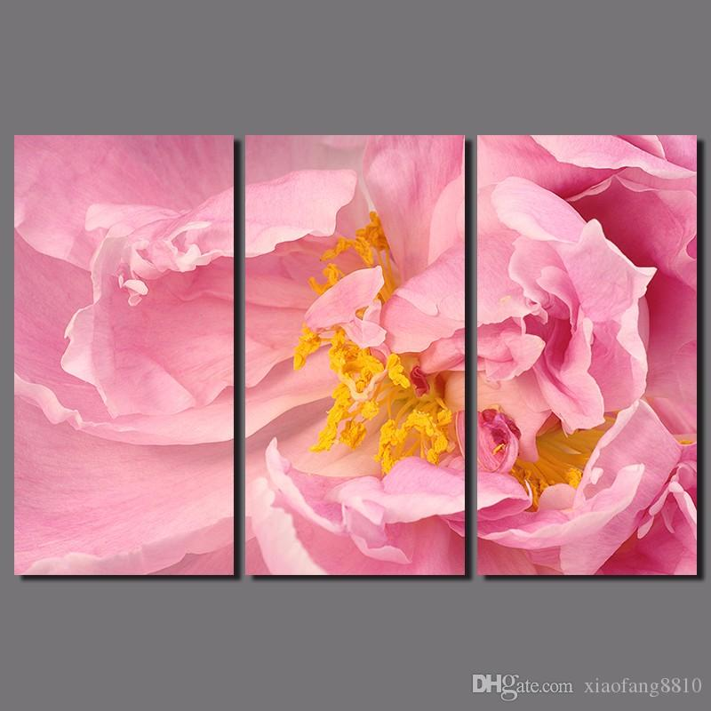 Flowers Yellow Stamen Plant Pictures Wither And Fall Pink Peony ...
