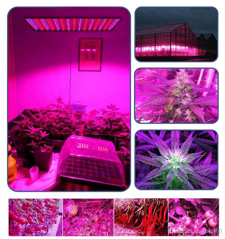 LED Red Blue Plant Grow Light Panel Home Garden 225 LEDs 45W SMD2835 LED Lamp Hydroponics Indoor Plant lamp US/EU/UK/AU