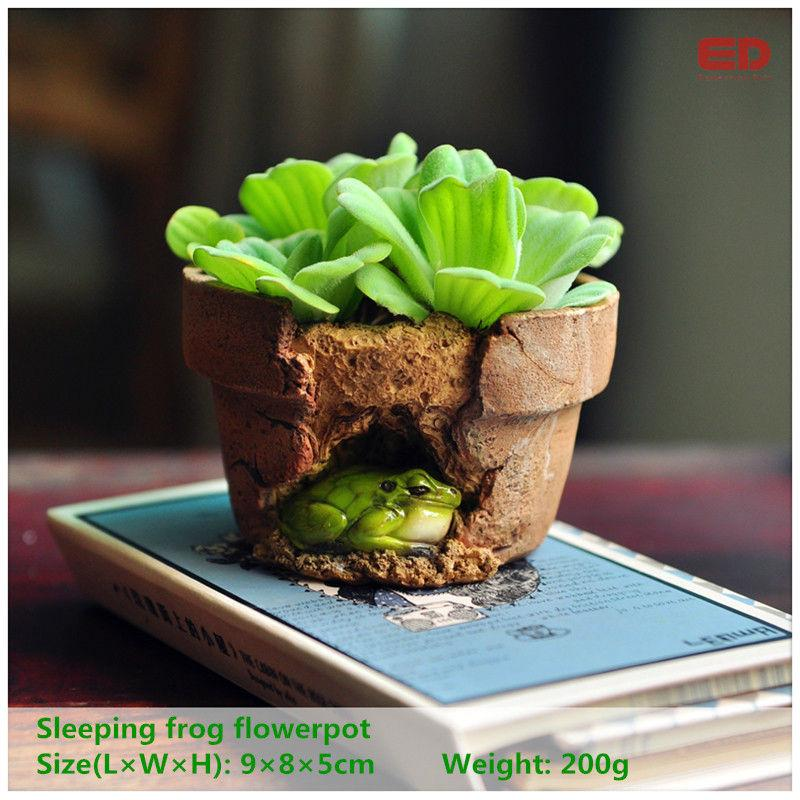 DHgate.com & Everyday Collection Garden Ornament Frog Flowerpot Bonsai Outdoor Planter Decoration Round Red Clay Flower Pots