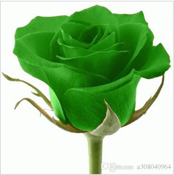Compre 50 Unids Semillas Color De Rosa Hermosas Semillas De Flores