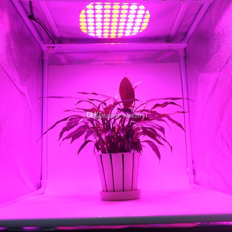 45W Red Blue White Orange LED Plant Grow Light 225 SMD 2835 LED Indoor Hydroponics Flower Vegetable Ultrathin Plant Growth Lamp Panel