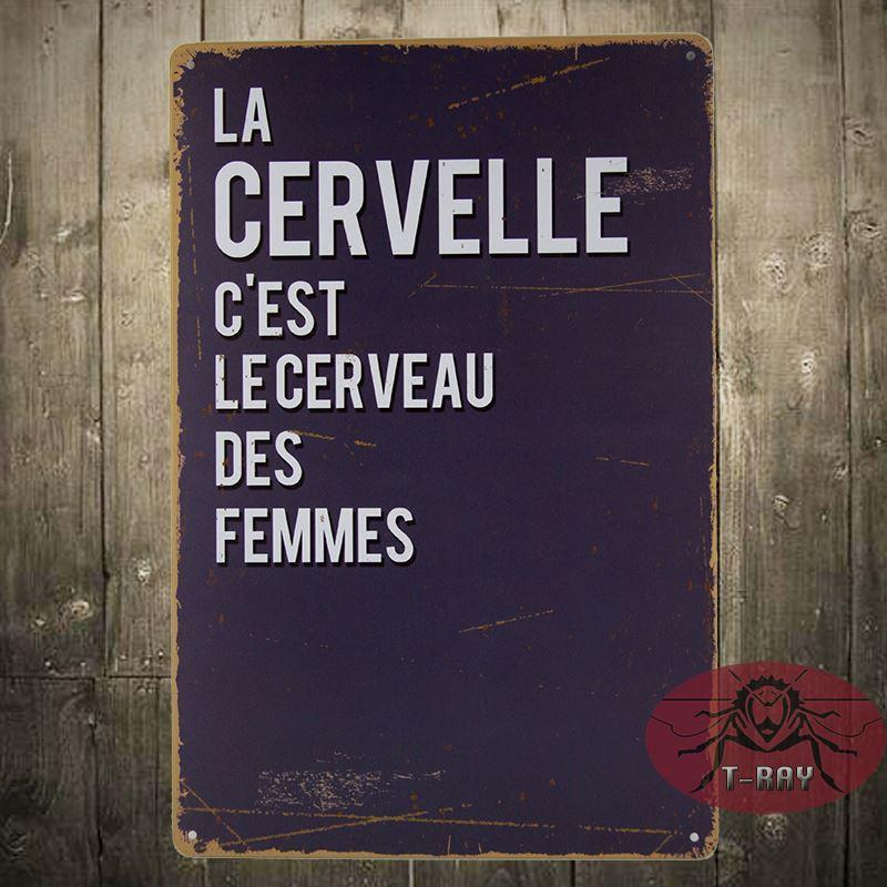 Vintage Home Decor La Cervelle C\'Est Le Cerveau Des Femmes Steel ...