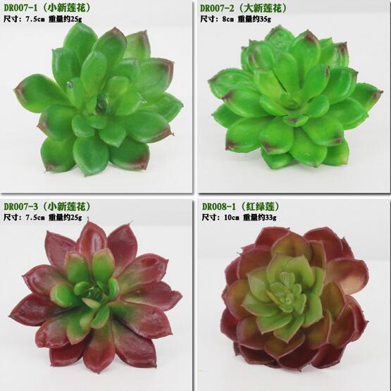 Simulation succulentes fleurs artificielles ornements mini-succulents artificiels verts plantes décoration de jardin