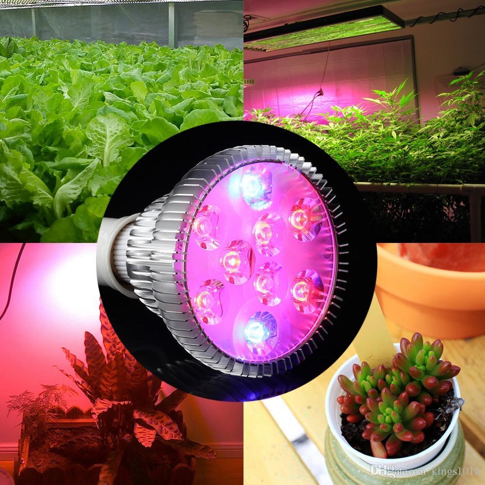 2016 Hot Sale E27 9w Garden Indoor Hydroponic Flower Lamp Bulb Par30
