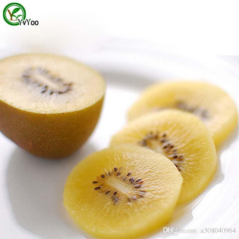 100 particules / sac Jaune Kiwi Graines Délicieux Fruits Mini En Pot Fruits Arbre Graines Intéressant Bonsaï Plante t002