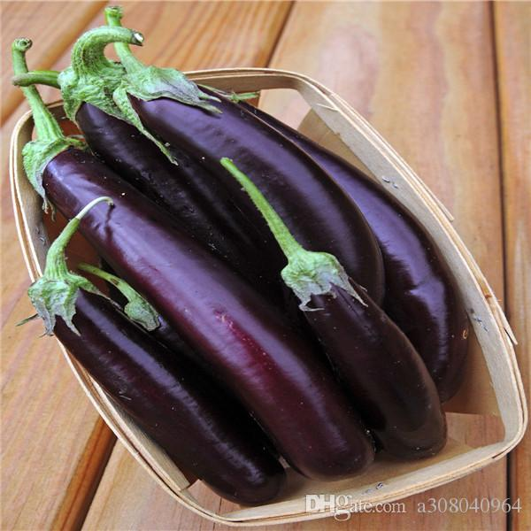 Long purple eggplant nutritious and delicious vegetable seeds DIY home Garden 100 seeds T079