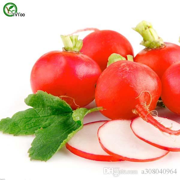 Семена вишни редьки садовые растения бонсай органические фрукты и овощные семена 50 шт. K017