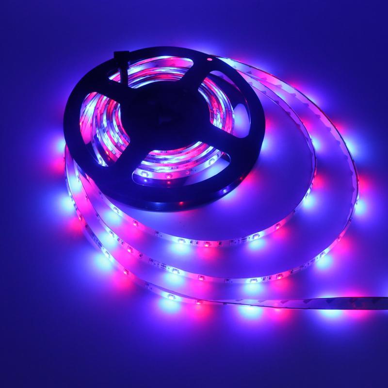 Faixa de fita Edison2011 IP65 impermeável 5M 3528 Faixa de LED Light 300 LED DC 12V Branco RGB azuis 60 leds / Tape M LED