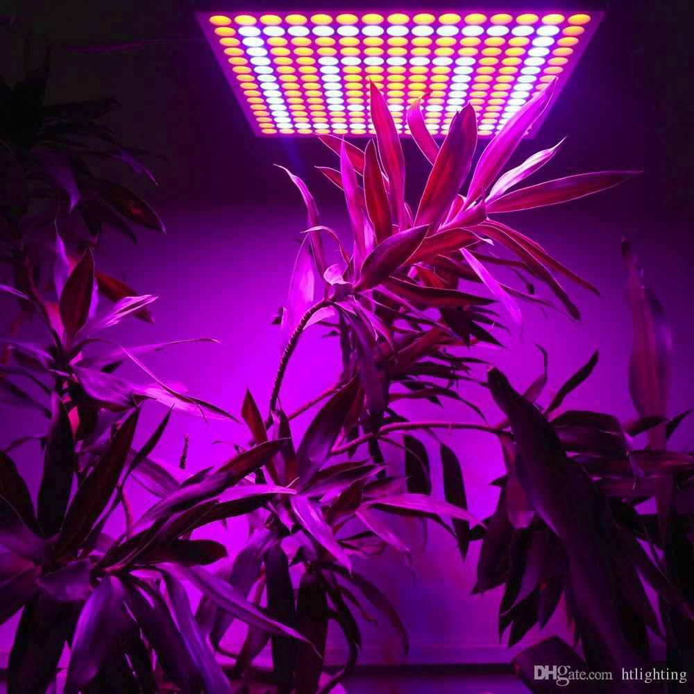 225 LEDs 65W Full Spectrum Indoor Garden Vegs Greenhouse Hydroponics System LED Grow Light Plant Grow Lamp