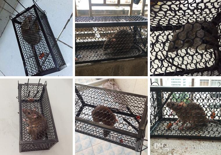 2 unids / lote Roedor Animal Ratón Humano Trampa Viva Hámster Jaula Ratones Rata Control Catch Bait
