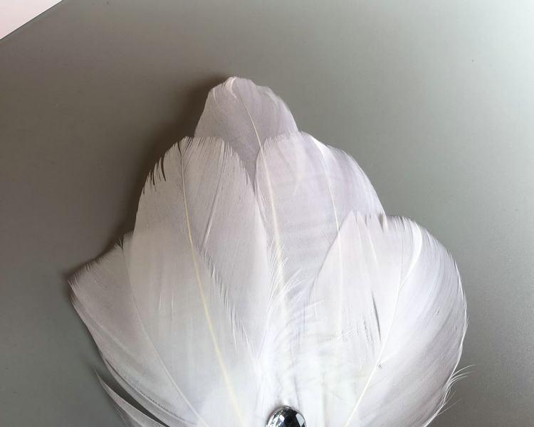 Coiffure de femme mariée, plume blanche, petit chapeau, pince à cheveux, coiffe, ballet, cygne, représentation sur scène, enfant, adulte