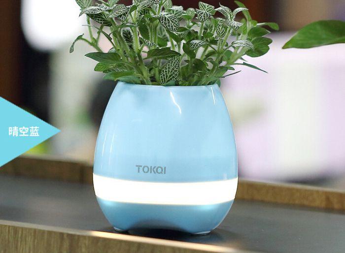 TOKQI Bluetooth Smart Musik Blumentöpfe intelligente echte Pflanze Touch spielen Blumentopf buntes Licht lange Zeit spielen Basslautsprecher Nachtlicht