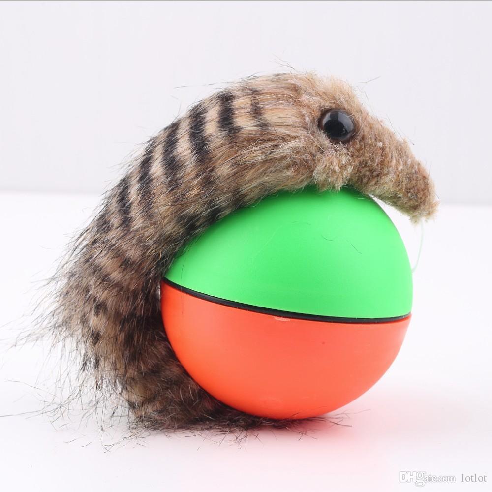 비버 공 강아지 고양이 족제비 전동 재미있는 롤링 공 애완 동물 아이 점프 재미를 이동 장난감