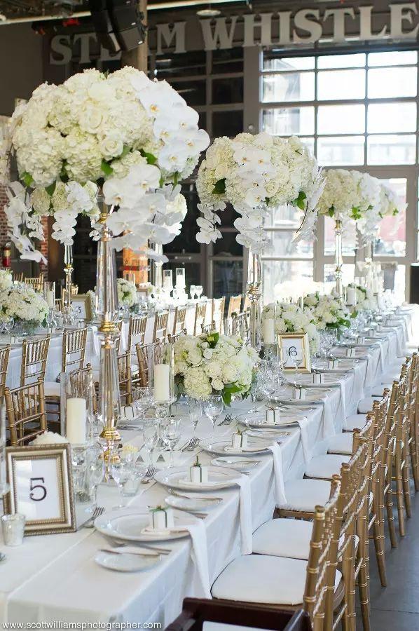 No Flowers Including Elegant New Design Wedding Reception