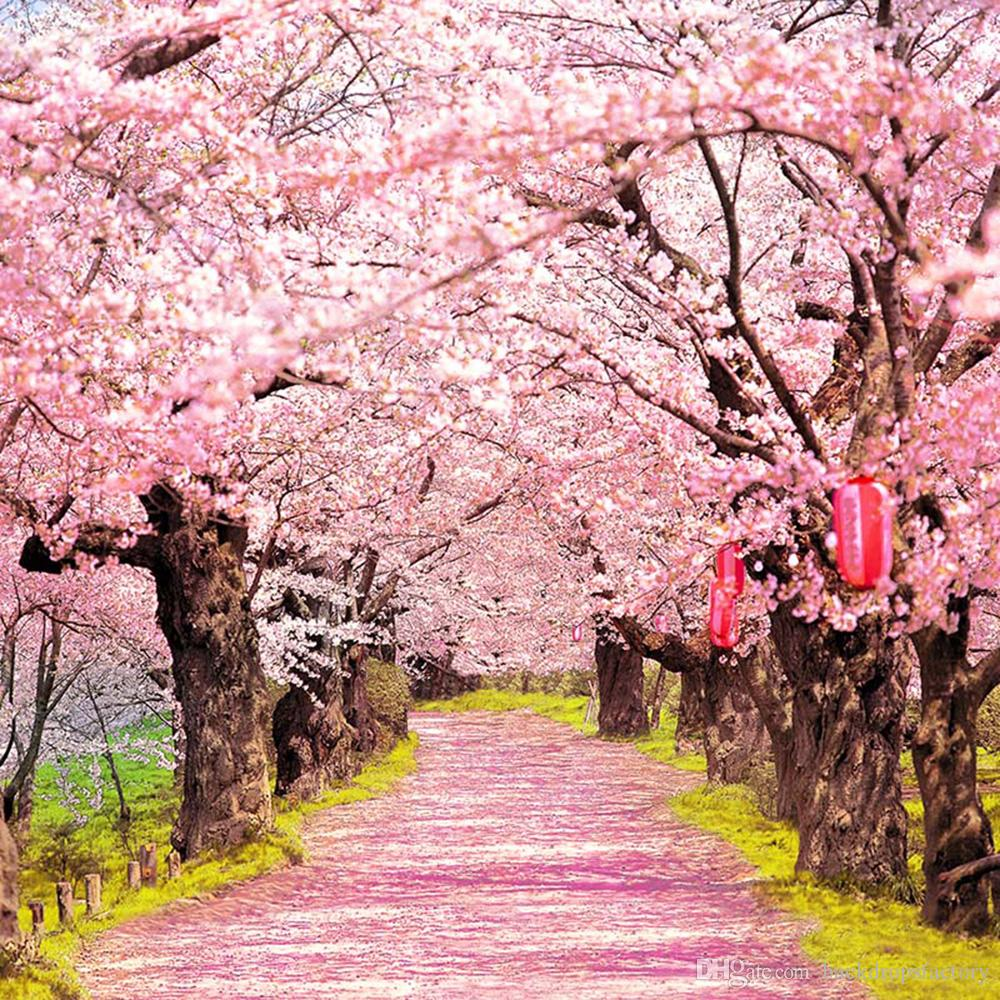 2018 pink cherry blossoms photo shoot backgrounds old trees with red 2018 pink cherry blossoms photo shoot backgrounds old trees with red lanterns outdoor scenic wallpaper romantic wedding photography backdrops from mightylinksfo