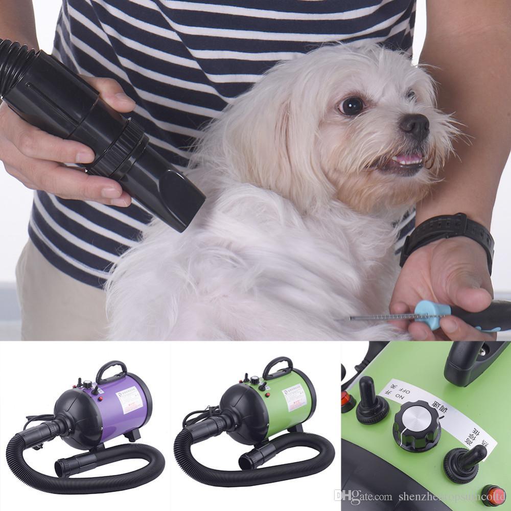 Pet Kurutma Kedi Köpek Saç Kurutma Makinesi Anyon 2800 W 110 V / 220 V Değişken Hız Yavru Yavru saç kurutma makinesi Bakım Araçları AB AU ABD İNGILTERE Tak