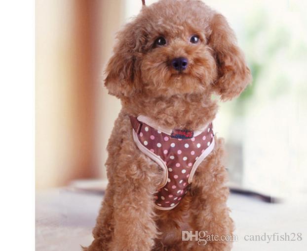 A5 Ev Bahçe Pet malzemeleri Köpek tasma küçük köpekler göğüs sapanlar pet köpek köpek zinciri çekiş halat