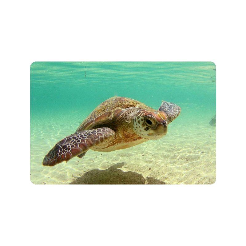 Beautiful Sea Turtle Custom Doormat Entrance Mat Floor Mat Rug Indoor/Outdoor/Front  Door/Bathroom Mats Rubber Non Slip Size 23.6 X 15.7 Flooring Over Carpet ...