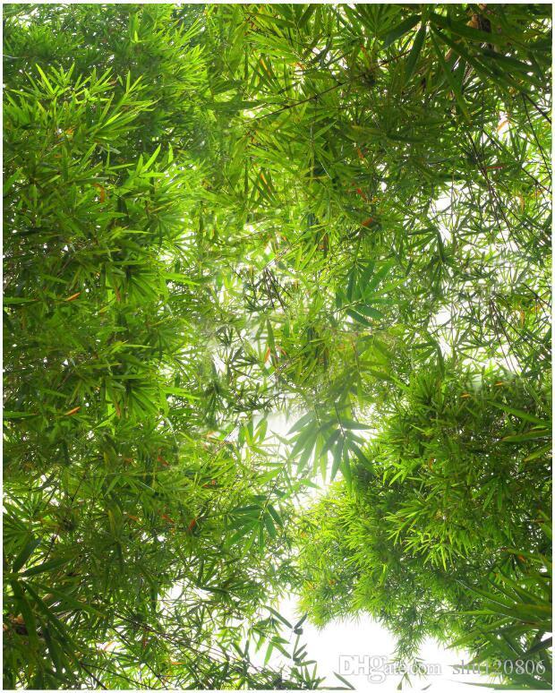 غرفة 3D wallpaer خلفية صورة جدارية مخصصة بانورامية المناظر الطبيعية للغابات الخيزران رسم المناظر الطبيعية الجداريات 3D للجدران 3 د