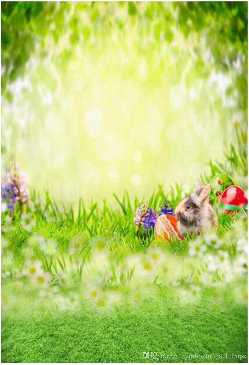 Großhandel Ostern Tagesfoto Studio Hintergrund Fantasie Bokeh Blüht