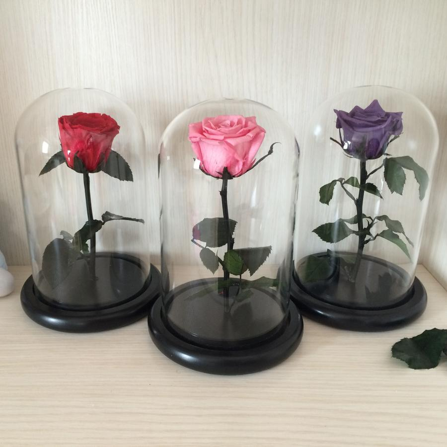 2018 Wholesale The Little Prince Glass Cover Fresh Preserved Rose Flower Immortal Colorful Roses For Girl ValentineS Day Wedding Gifts From Herbertw