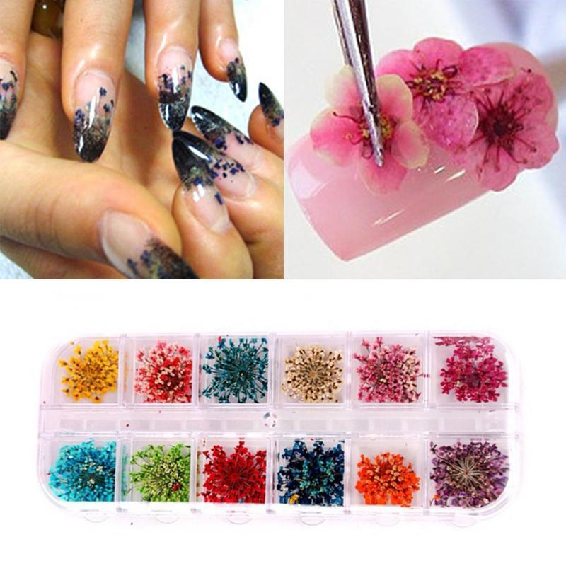 Real Nail Dried Flowers Art Decoration Diy Tips With Case Small Nails Tools Rhinestones Decorations Painting Piercing From