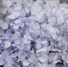 1Box Preserved Hydrangea Flower Head For Wedding Home Party Holiday Decorate DIY Bouquet Project Accessory