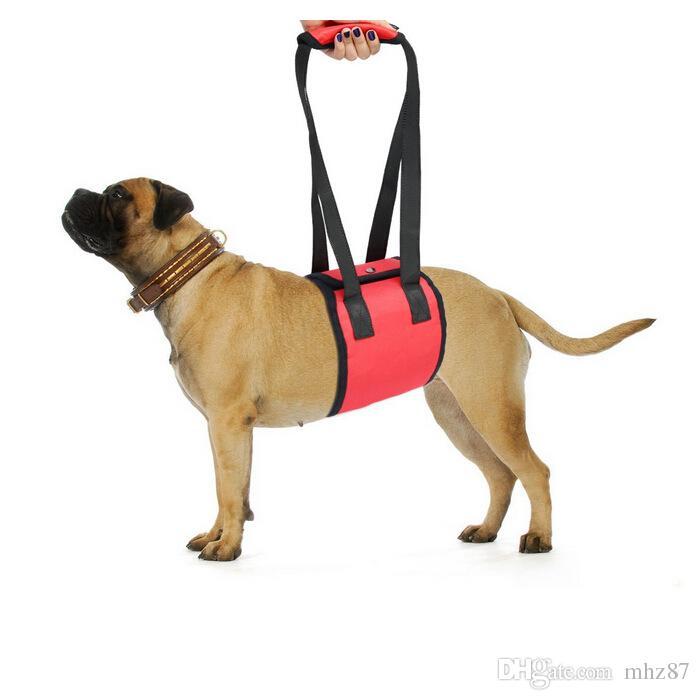Blue Pet Dog Lift Support Harness für Hilfe Lifting Ältere K9 mit für Verletzungen Arthritis oder Schwache Hind Beine Gelenke Mobility Rehabilitation