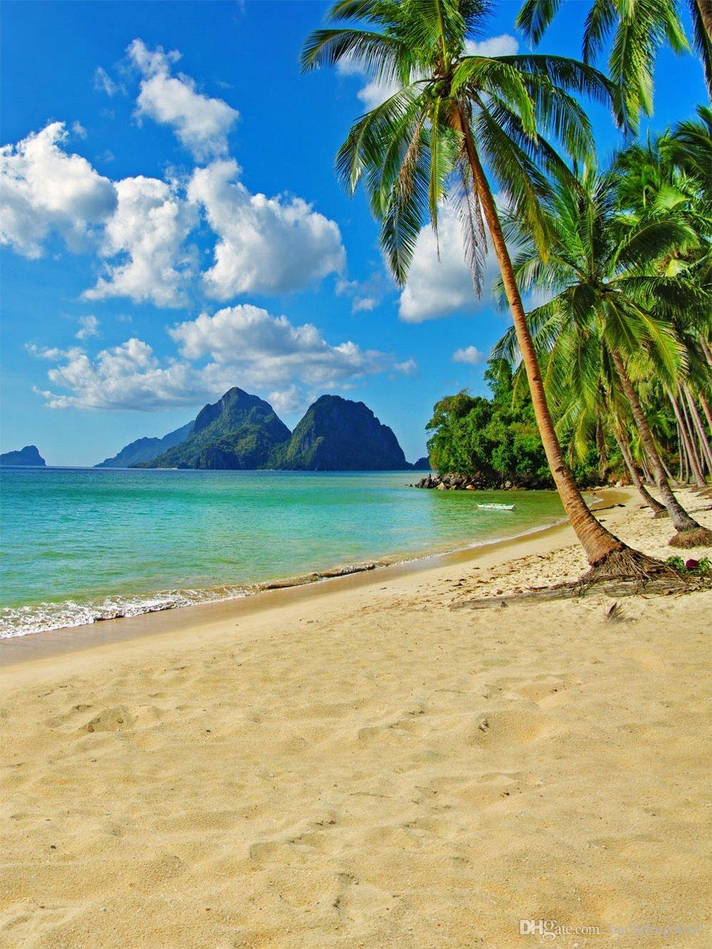 Tropical beach images 8
