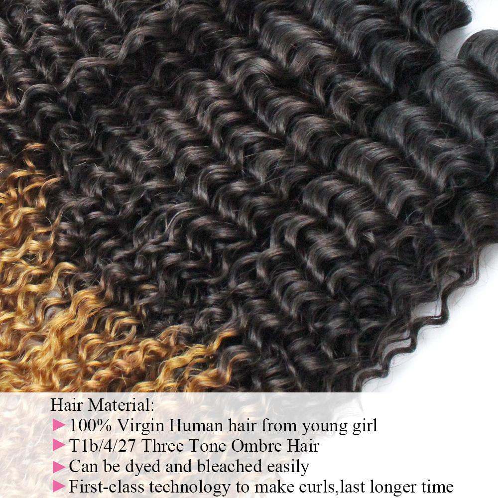9A High Quality Afro Kinky Curly Hair T 1b 4 27 Ombre Human Hair Extensions 3 Bundle Mongolian Kinky Curly Remy Hair