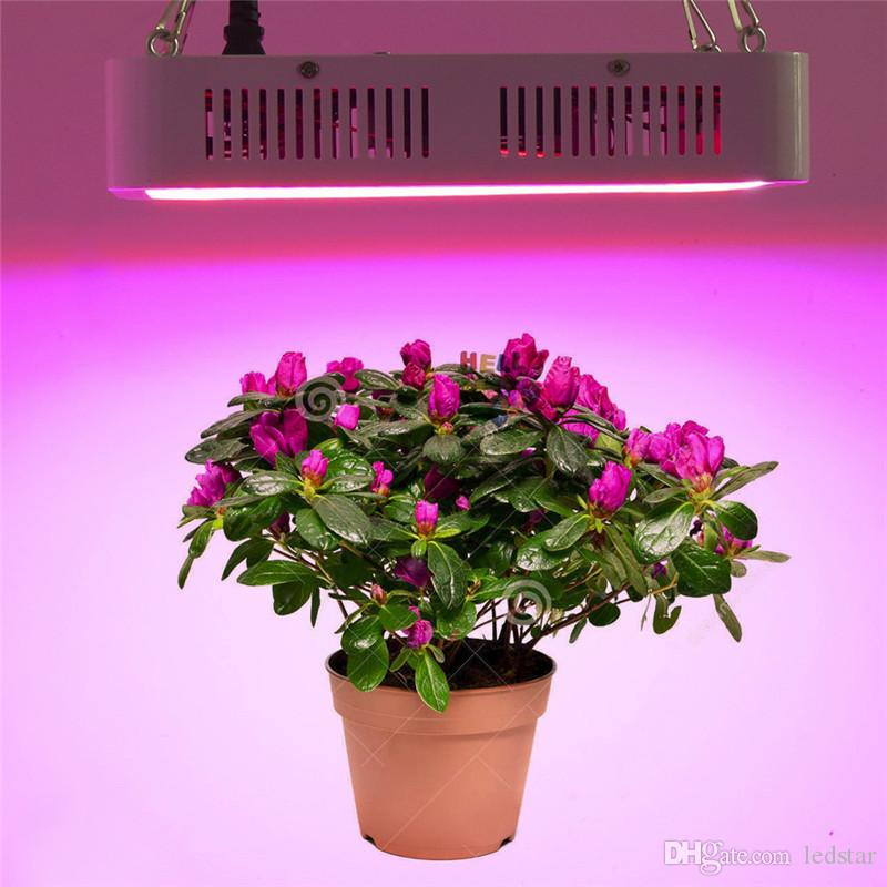 systems marijuana light growing for best lighting lights grow