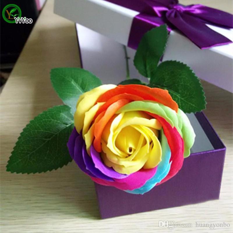 plantas de jardim bonitas Sementes Arco-íris Rosa Multi-colorida semente Rose outdoor planta R34