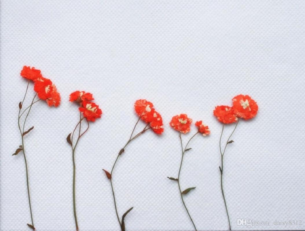 Pressed Dried Daisy Flower With Branch For Epoxy Resin Pendant Necklace Jewelry Making Craft DIY Accessories
